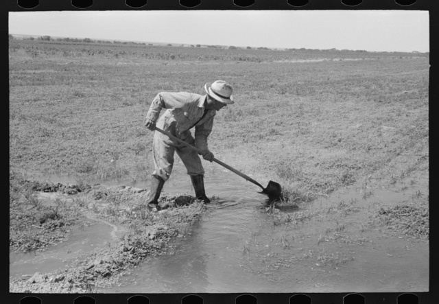 Mr. Johnson, FSA (Farm Security Administration) client with part interest in cooperative well, irrigating his fields near Syracuse, Kansas