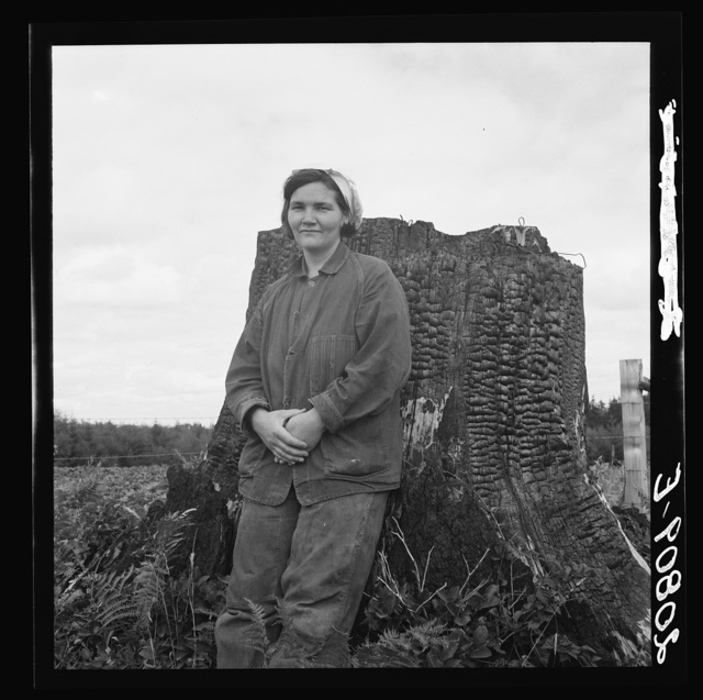 Mrs Arnold, age thirty two, does man's work on the rough and stumpy land to build a farm. Western Washington, Thurston County, Michigan Hill. See general caption number 36