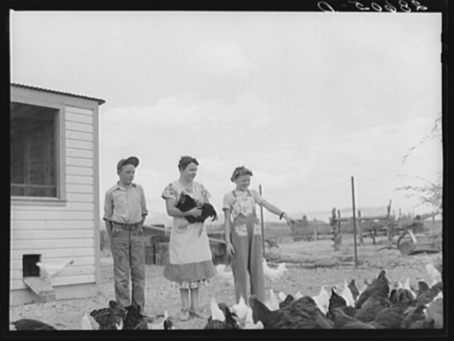 Mrs. Thomas Beede with her son Wayne and daughter Margaret and chickens. Western Slope Farms, Colorado
