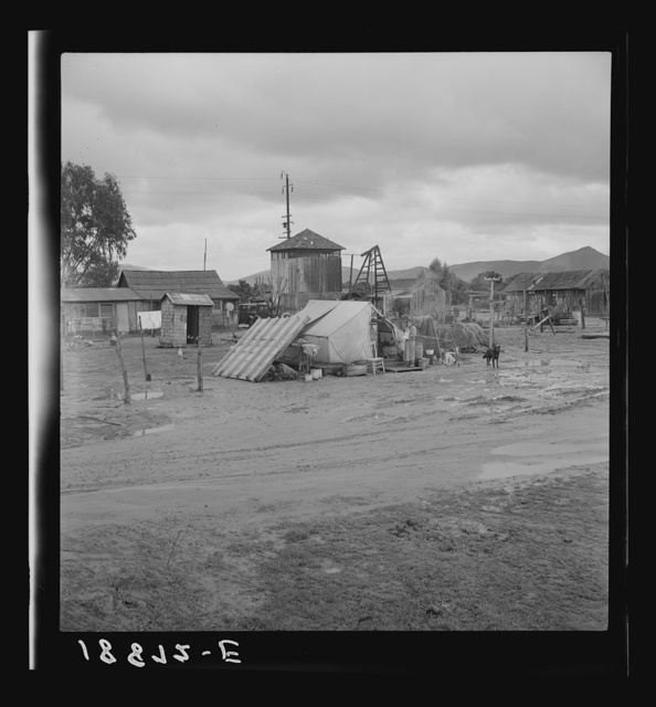 Near Strathmore, California. Mexican migratory citrus worker's family. Camped here