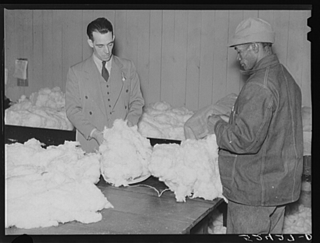 Negro farmer brings his cotton samples to the cotton broker. Clarksdale, Mississippi Delta
