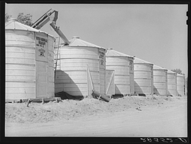 Newly-constructed field bins for storing shelled corn under ever-normal granary program. Woodbine, Iowa