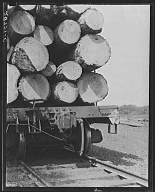 Oregon, Klamath County, near Klamath Falls. Pelican Bay Lumber Company. Logs hauled to the mill by flatcar, then dumped into the mill pond. Note markings on logs. Mills brand their logs like cattle brands, and there is likewise rustling of logs