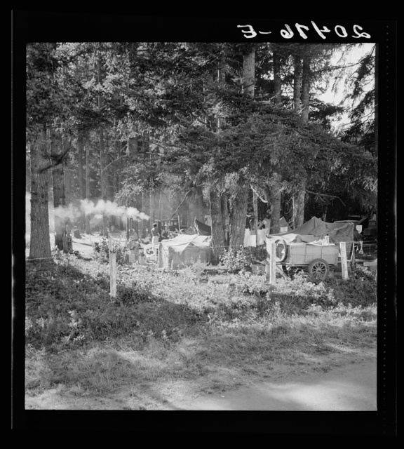 Oregon, Marion County, near West Stayton. Large private auto camp in woods at end of day. Bean pickers from many states. General caption 46