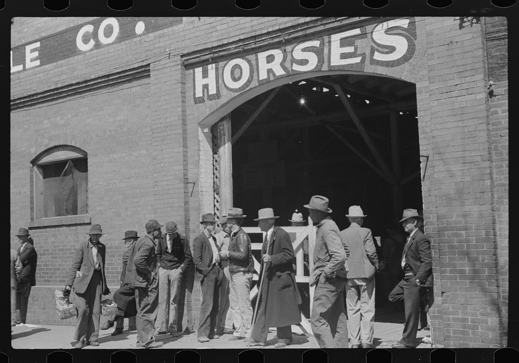 Outside of stables during mule and horse auction in Montgomery, Alabama