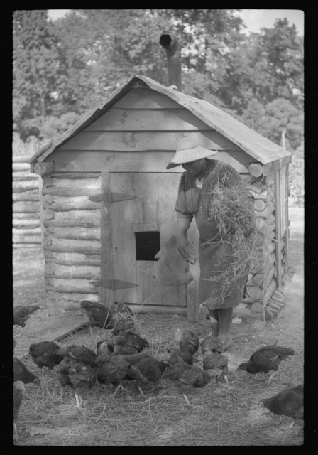 Pauline Clyburn, rehabilitation borrower, Manning, Clarendon County, South Carolina, and her son repairing home