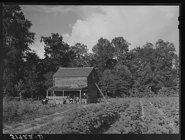 Pauline Clyburn, rehabilitation client, and some of her children at their tobacco barn. Manning, Clarendon County, South Carolina