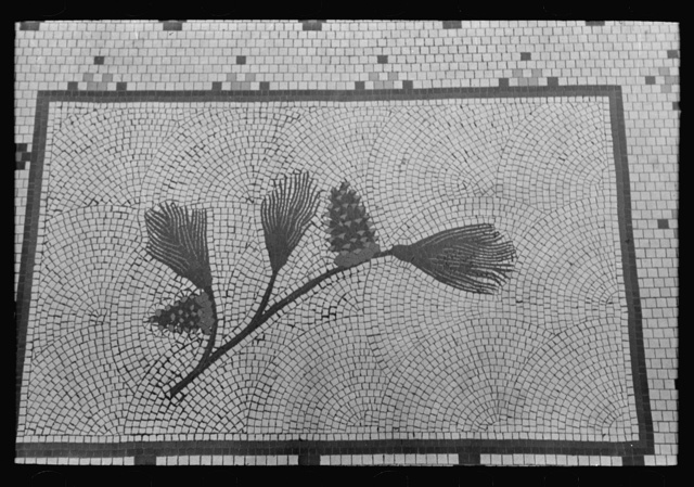 Pine cones and needles, symbol of the First National Bank, San Augustine, Texas. This is done in tile