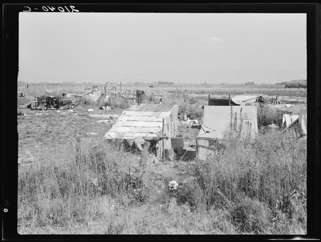 Potato pickers' camp. Tulelake, Siskiyou County, California. General caption number 63-1