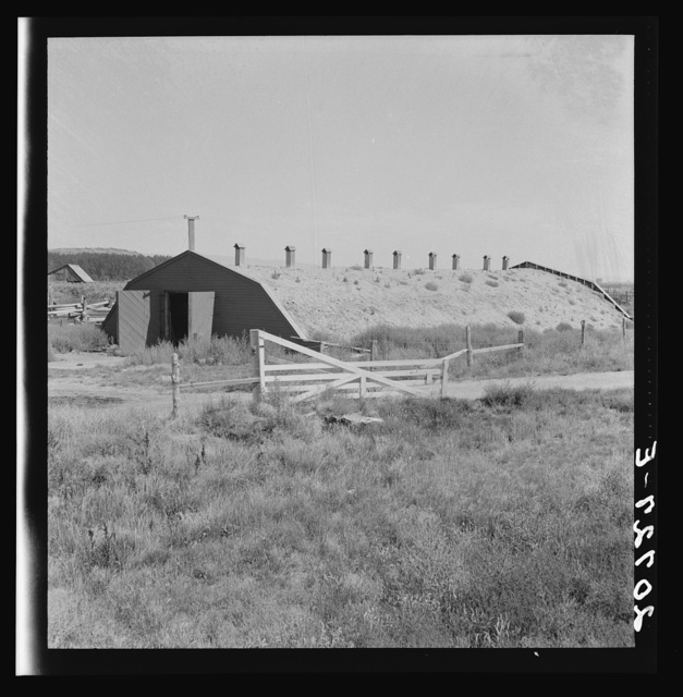 Potato storage cellar in Klamath Basin, where potatoes are raised under irrigation. Klamath County, Oregon