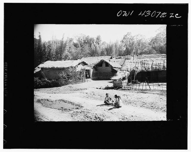 Public Health Service Investigation Commission to the China-Burma highway, Chefang Valley, China. A small village. Malaria mosquitoes breed in the irrigation ditches just on the other side of the bamboo trees