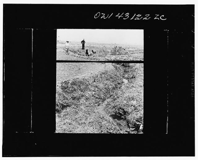 Public Health Service Investigation Commission to the China-Burma Highway, Chefang Valley, China. Drainage ditch from rice field. Minimus will breed along either bank where the water is moving, but not in pools where water vegetation grows
