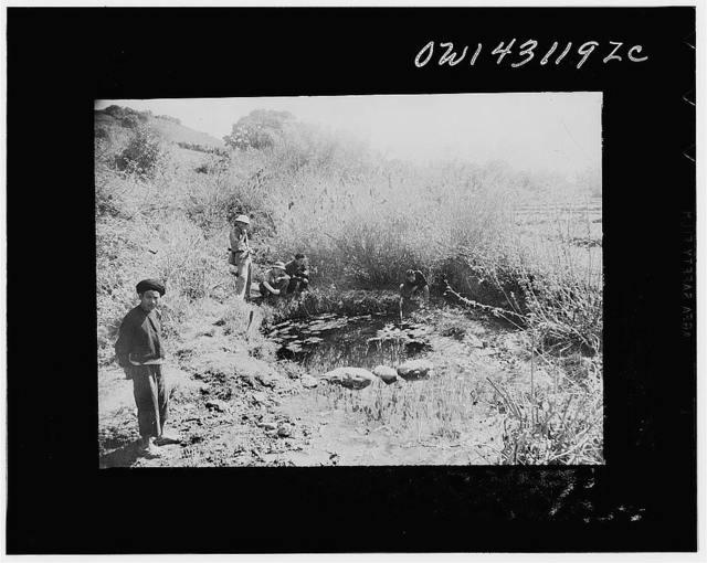 Public Health Service Investigation Commission to the China-Burma Highway, Chefang, China. A natural spring at the edge of the city, supplying water to the area which was used as a gambusia minnow hatchery
