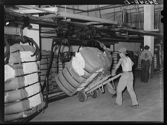 Removing bale of cotton from conveyer. Compress, Houston, Texas