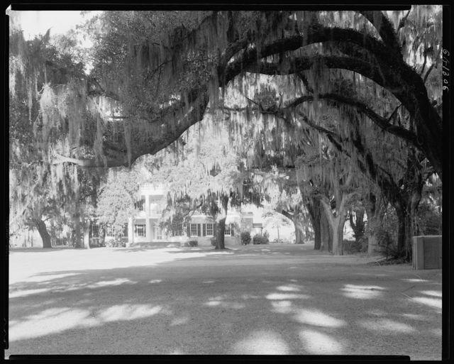 Richmond Hill plantation, Savannah vic., Chatham County, Georgia