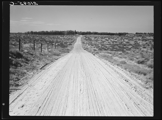 Road leading to small farm in northern Oregon. Irrigon, Morrow County, Oregon. General caption number 59