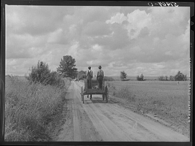 Rural South Carolina. Near Manning