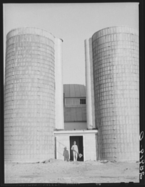 Silos at the Bois d'Arc cooperative farm store feed for 102 dairy cows. Osage Farms, Missouri