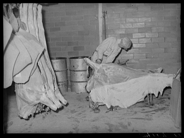 Skinning a beef carcass. Packing plant, Scotts Bluff, Nebraska