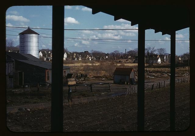 [Small farm of John P. Collins, Taunton, Mass.]