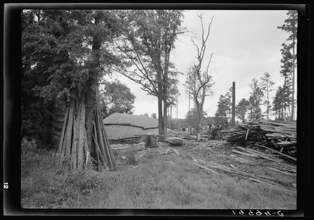 Small portable sawmill, very typical of the sawmills which are cutting small pine and hardwood growth of the area. Note mill and boiler, sawdust pile, stacks of slabs (or outsiders) located in fringe of trees between the highway and a corn field. Near Chapel Hill, North Carolina