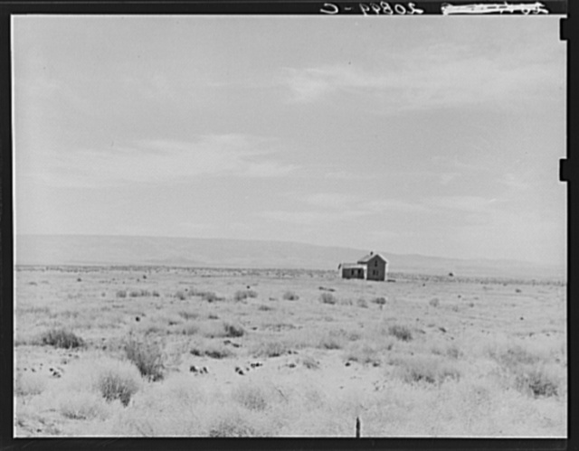 South of Quincy, Grant County, Washington. Abandoned dry land farm in the Columbia Basin. See general caption number 35