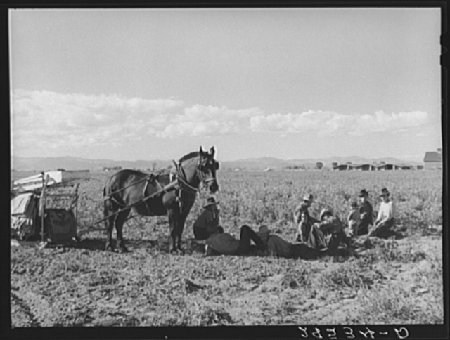 Spanish-American potato pickers at rest. Rio Grande County, Colorado
