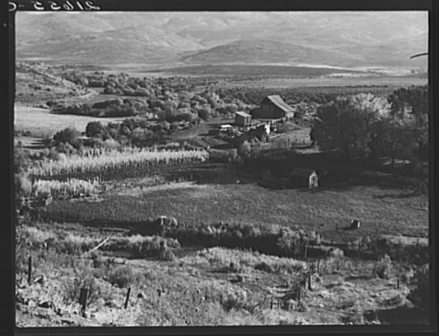 Squaw Valley farm. 640 acres, sixty in tillable land, raises mainly livestock.  Established about fifty years ago. Note old shakes on small building in foreground. The Ola self-help sawmill co-op has supplied shingles for barn and grainery. Note new lumber from the mill, piled in yard. Gem County, Idaho. General caption 48