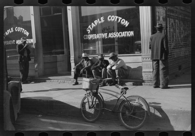 Staple Cotton Cooperative Association, Belzoni, Mississippi Delta, Mississippi