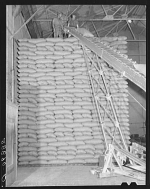 Storing bags of sugar at beet factory, Brighton, Colorado
