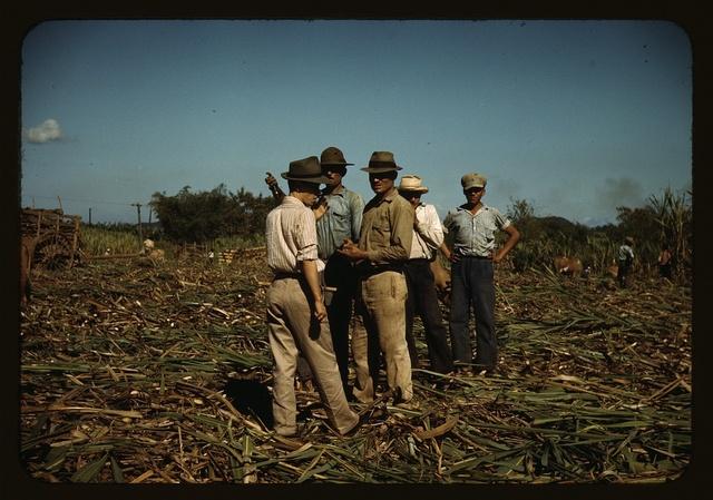 Sugar cane workers resting, Rio Piedras, Puerto Rico