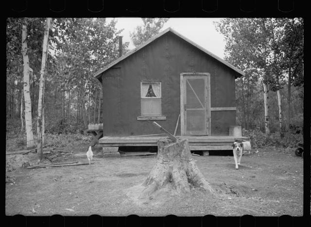 Tar paper shack in Minnesota cut-over area, Beltrami County, Minnesota