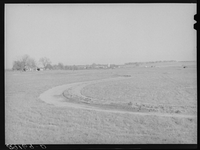 Terraced field. Greene County, Missouri