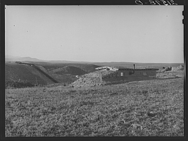 The Daugherty home. Note siphon which brings irrigation water from the opposite bench. Warm Springs district, Malheur County, Oregon. General caption 74