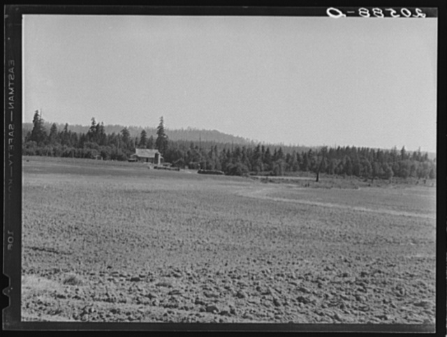 The Nieman farm showing cleared land on which the bulldozer is clearing more land. Western Washington, Lewis County, near Vader. See general caption number 41