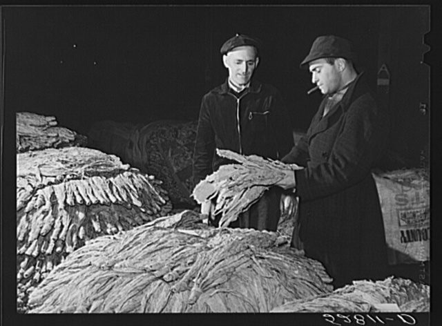 Tobacco warehouseman examining farmer's tobacco before auction sale. Durham, North Carolina