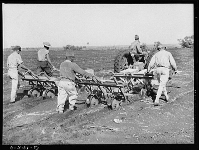 Tractor-driven combination bean planter and fertilizer used on large tracts of farmlands around Lake Okeechobee, Florida
