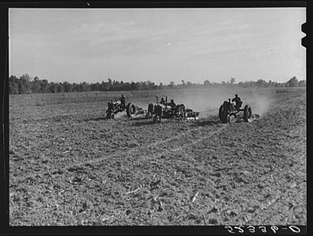 Tractors preparing land for planting oats in the fall after the cotton has been picked and the stalks plowed. Good Hope Plantation, Mileston, Mississippi Delta, Mississippi