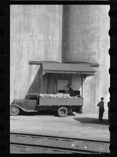 Truck unloading sacks of wheat at elevator. Most grain is delivered to city elevators by freight train. Minneapolis, Minnesota