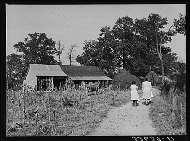 Two women of the Wilkins family by Mrs. Fred Wilkins barn on corn-shucking day. Tallyho, Stem, Granville County, North Carolina