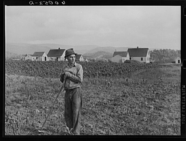 Tygart Valley Homesteads, West Virginia