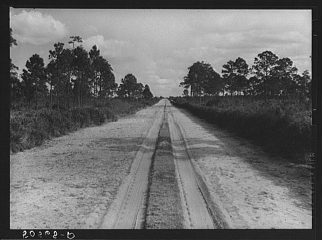 Typical Florida road and country near Winter Haven
