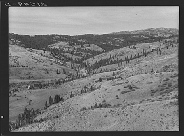 Upper end of Squaw Creek Valley near the mill, showing part of the timber resources. Ola self-help sawmill co-op. Gem County, Idaho. General caption 48