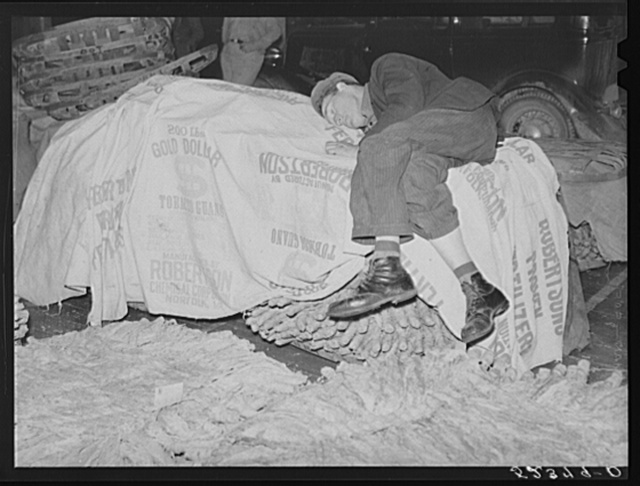 Very often farmers must travel long distances at night or wait several days for tobacco to be sold. They can be found sleeping on the covered piles of tobacco in warehouse or in their trucks or on the floors of camp room. Durham, North Carolina