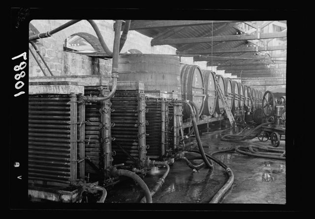 Vintage activities at Richon-le-Zion, Aug. 1939. Refrigerating apparatus in the cellars showing barrels beyond 2004 in collection