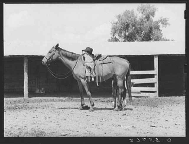 Warren Brewster ranch, Mont. Little girl with mare