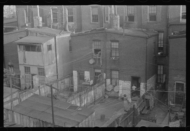 Washington, D.C. A view of backyards of apartment houses where both white and Negro families are living