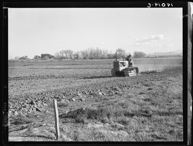 West side of San Joaquin Valley, California. Caterpillar diesel type. Tractor is common in California. Only very large-scale operations can afford this type. Cultivating potato fields