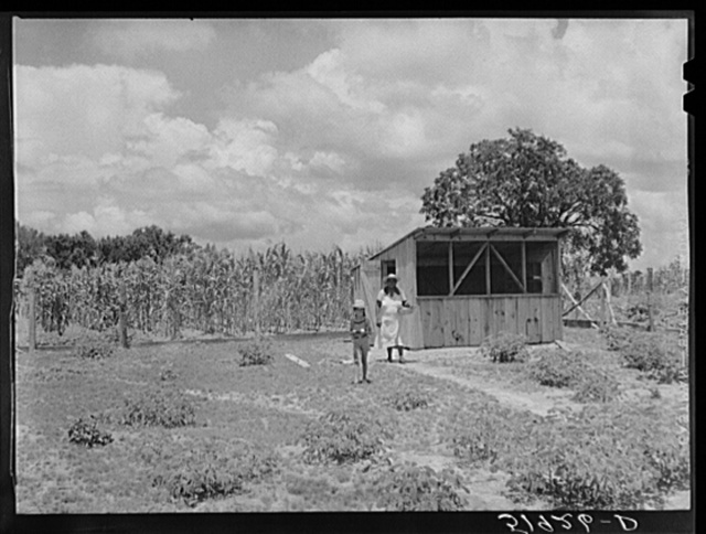 Wife and daughter of Frederick Oliver, FSA (Farm Security Administration) tenant purchase client, bringing in eggs from chicken house. Summerton, South Carolina