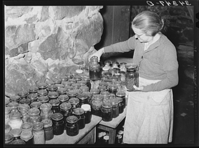 Wife of FSA (Farm Security Administration) client looking at canned goods stored in her cellar. Near Bradford, Vermont, Orange County